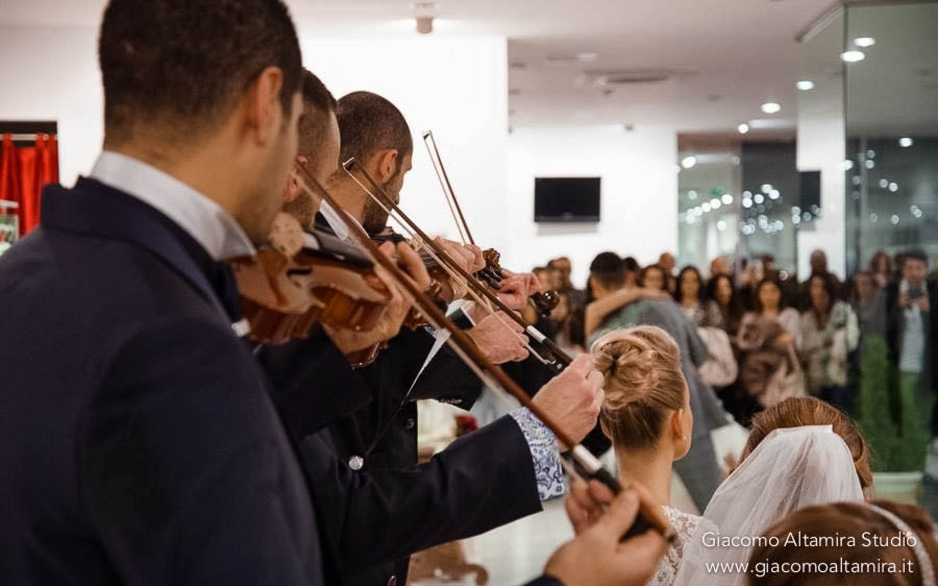 violini2-1